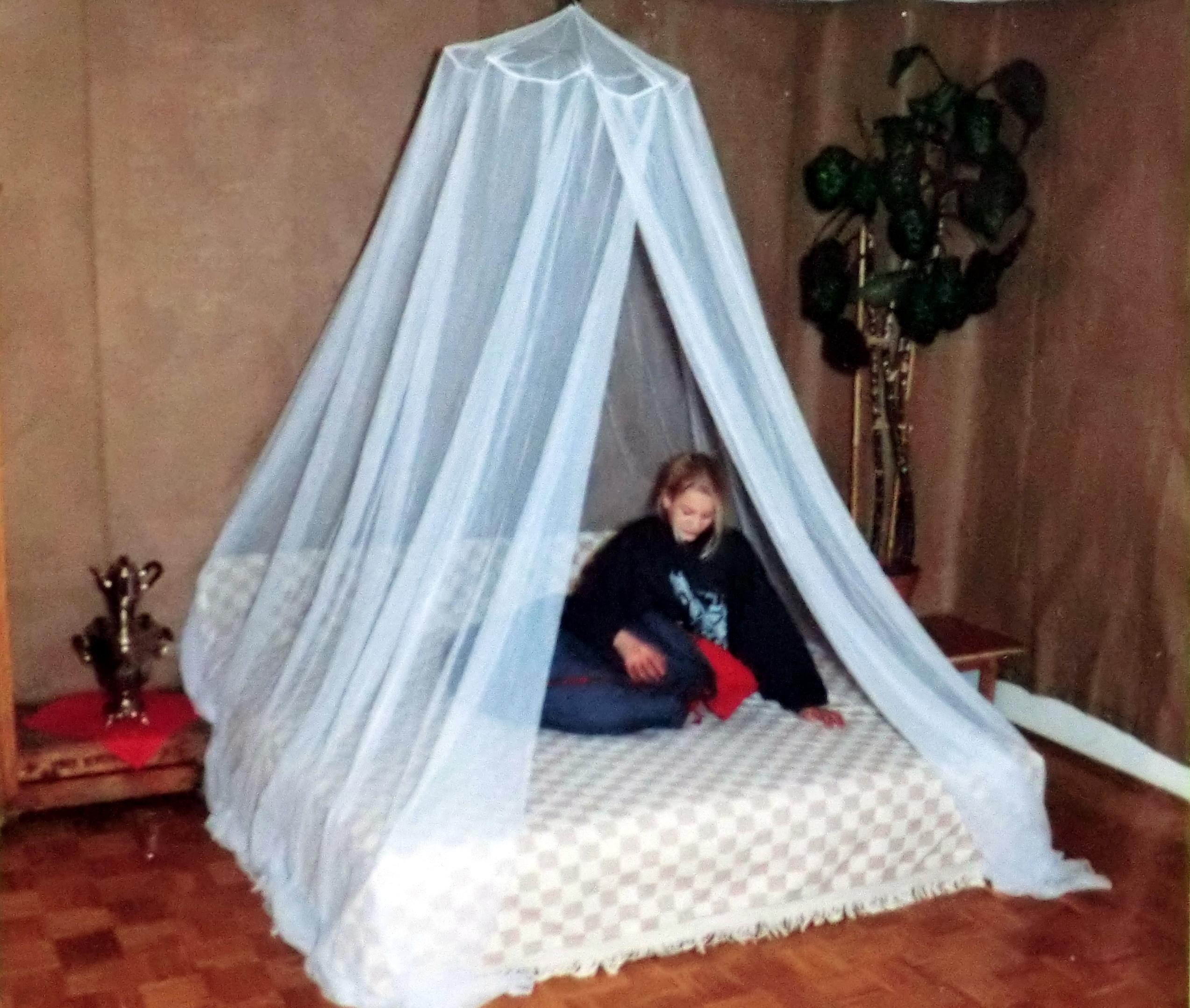 Mücken Im Schlafzimmer