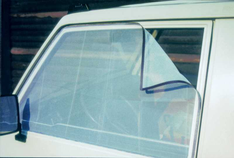 Moskitoschutz am Auto