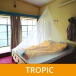 holiday tropic 230x230