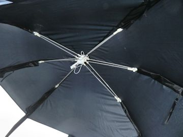 Picnic-Tent Spinne