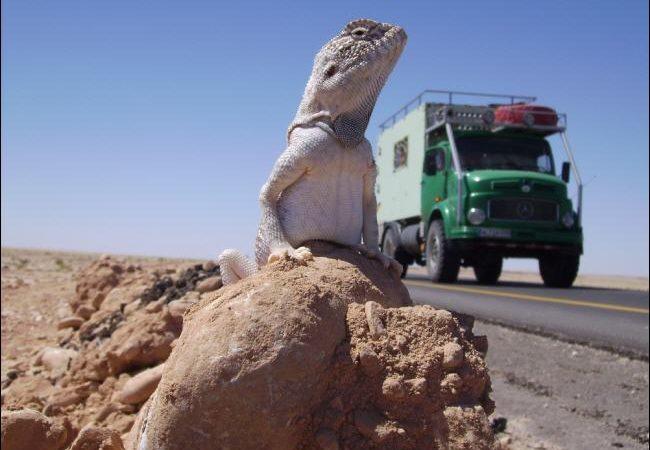 Mit dem Truck auf Weltreise
