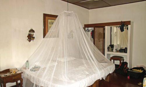 Moskitonetz in unserem Zimmer in Kandy.
